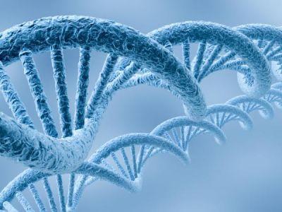 La FDA aprueba estudio  no invasivo para la deteccion de cancer de colon